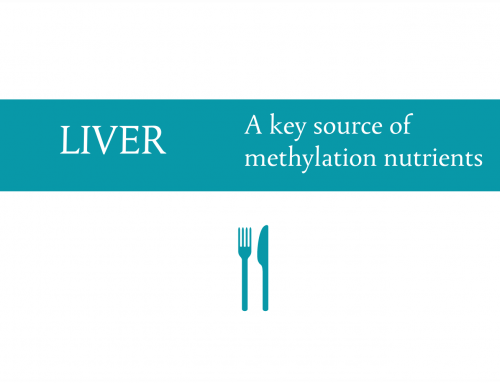 Liver : A key food source of methylation nutrients