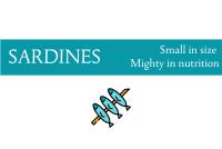 Blogheader regarding sardine nutrition facts from CALMERme.com