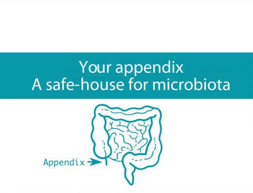 Your appendix: A safe-house for microbiota