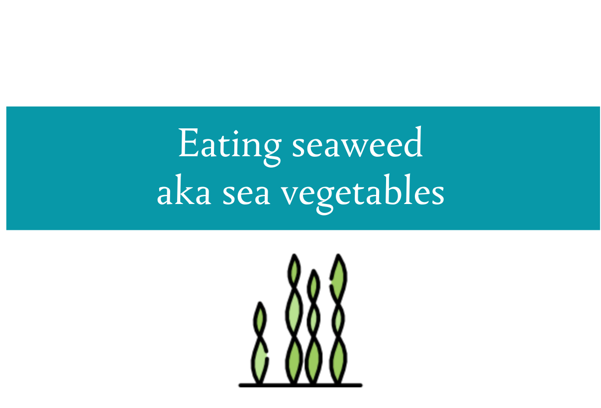 Seaweed | The superfood you probably aren't eating