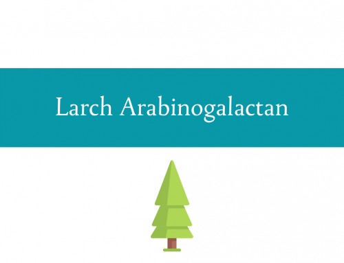 Larch Arabinogalactan | A dietary fiber with additional benefits
