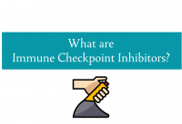 Blog header about what are immune checkpoint inhibitors from CALMERme.com